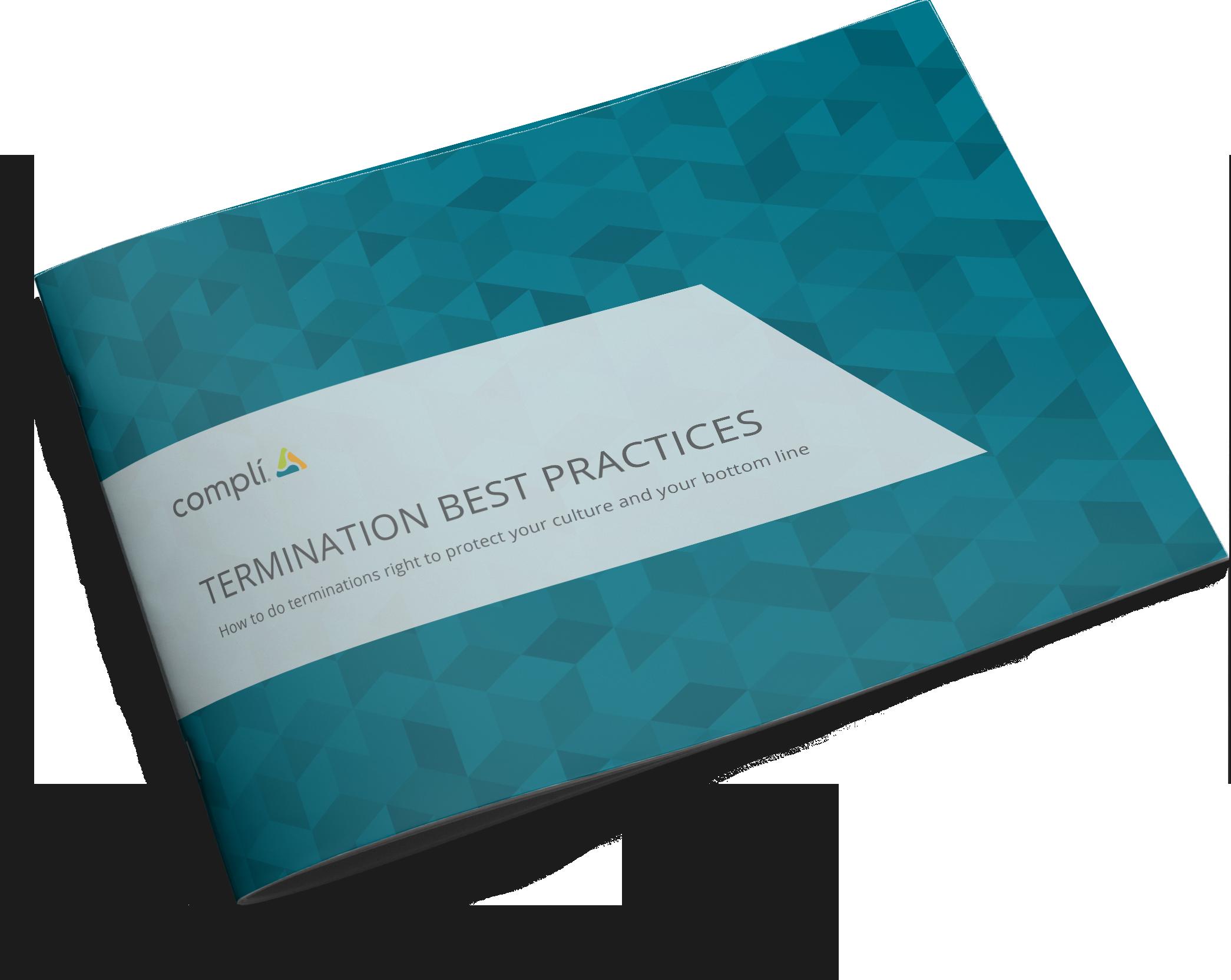 Termination ebook cover - transparent.png